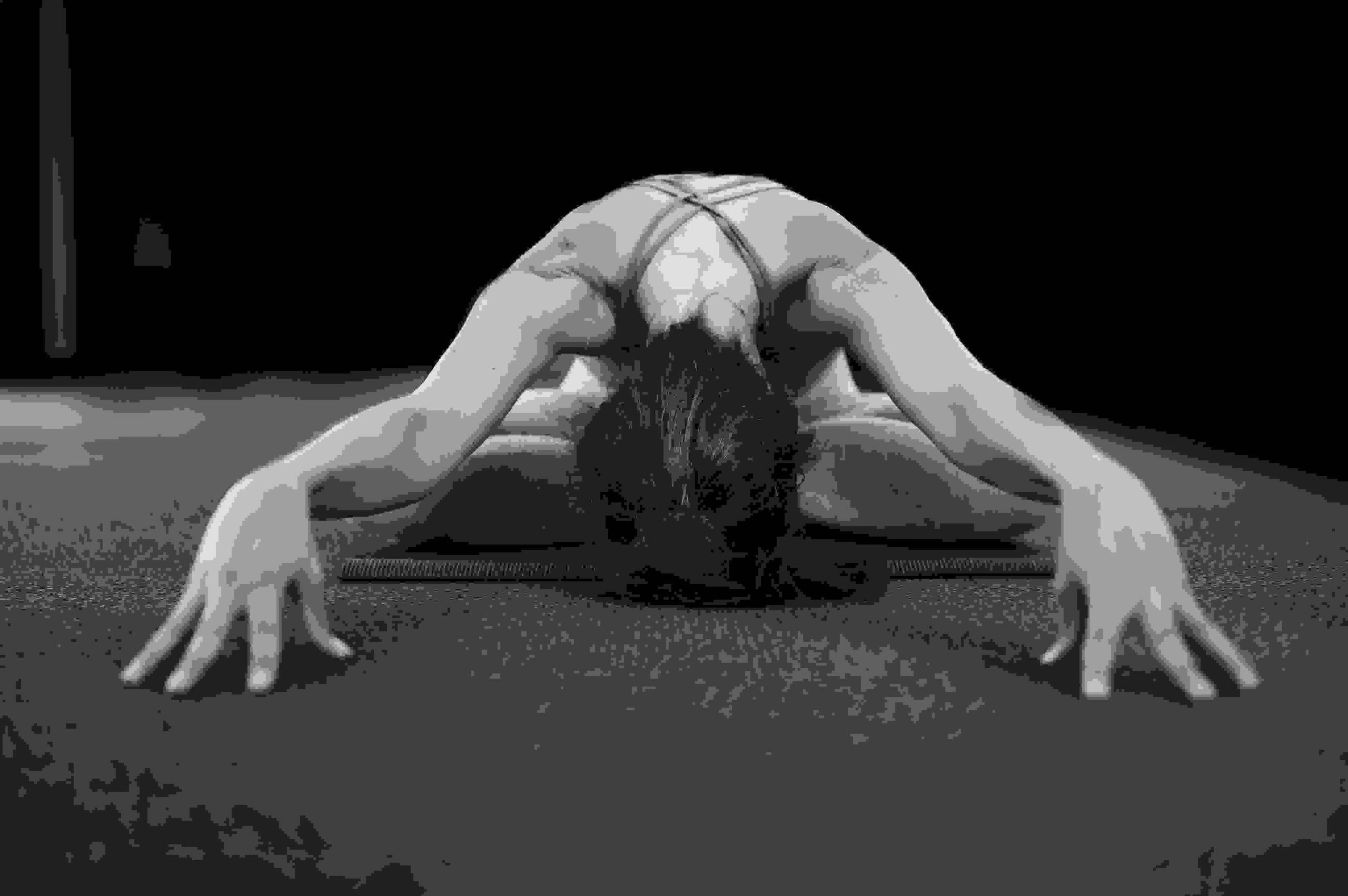 meelo yoga 8 limbs of yoga